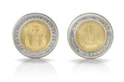 Jeden Egipska funtowa moneta Zdjęcie Royalty Free