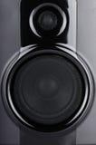Jeden głośnik Zdjęcie Stock