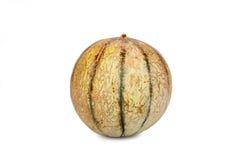 Jeden Galia melonu kantalup zdjęcia royalty free