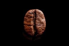 Jeden kawowa fasola odizolowywająca na czystym czarnym tle Duża makro- zbożowa kawowa czarna kawa espresso Zmrok piec kawa Zdjęcie Royalty Free