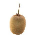Jeden kiwi owoc Zdjęcia Royalty Free