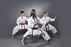 Jeden kobiety i dwa brązu paska męski karate robi kat Fotografia Royalty Free