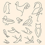 Jeden kreskowy ptaka loga set royalty ilustracja