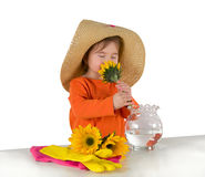 Jeden małej dziewczynki ułożenie kwitnie na stole Zdjęcie Stock