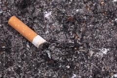 Jeden papierosowy krupon Obrazy Royalty Free