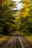Jeden pas ruchu droga gruntowa w jesieni Nowy Jork - Palcowy jezioro las państwowy - Obrazy Royalty Free