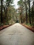 Jeden pas ruchu droga nigdzie TX Fotografia Royalty Free