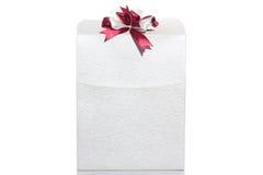 Jeden piękna torba wyróżniać kobietami, odizolowywać na białym tle Fotografia Royalty Free