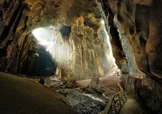Jeden piękne jamy ten Borneo Gomantong one li zdjęcie stock