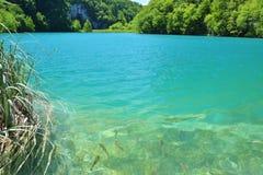 Jeden piękni miejsca w Plitvice, Chorwacja światowych - Zdjęcia Royalty Free