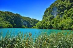 Jeden piękni miejsca w Plitvice, Chorwacja światowych - Obrazy Royalty Free