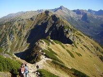 Jeden piękny ślad w wysokich połysk górach zdjęcia royalty free