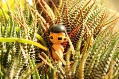 Jeden postaci chłopiec zabawka z żółtymi okularami przeciwsłonecznymi w kaktusowym Bush na słonecznym dniu zdjęcia royalty free