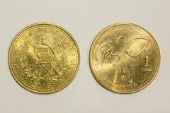 Jeden Quetzal moneta Zdjęcie Royalty Free