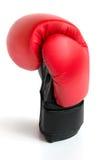 Jeden rękawiczka dla boksować Obrazy Stock