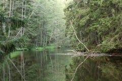 Jeden rzeka Obrazy Royalty Free