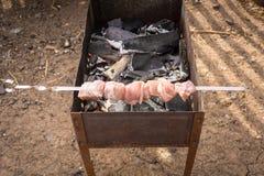 Jeden skewer z surowym mięsem przygotowywającym dla piec Obrazy Stock