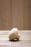 Jeden surowy agaricus Zdjęcie Stock