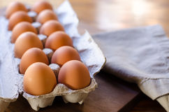 Jeden Tuzin Brown jajek Zdjęcia Stock