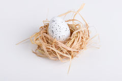 Jeden Wielkanocny jajko w gniazdeczku na bielu Obraz Stock