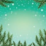 Jedlinowe gałąź i płatki śniegu na kolorowym tle Zdjęcia Royalty Free