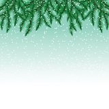 Jedlinowe gałąź i płatki śniegu na kolorowym tle Obraz Royalty Free