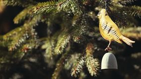 Jedlinowego drzewa gacenia ogródu metalu ptak zdjęcie wideo