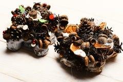 Jedlinowego drzewa rożki, dokrętki, acorns i susi cytrusy w składzie, fotografia royalty free