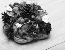 Jedlinowego drzewa rożki, dokrętki, acorns i susi cytrusy w składzie, obrazy stock