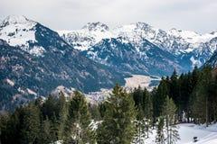 Jedlinowi drzewa i góry w Niemcy Fotografia Stock