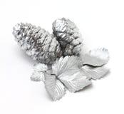 Jedlinowi rożki i liść dzika truskawka Fotografia Stock