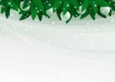 jedlinowy Bożego Narodzenia drzewo Obraz Royalty Free