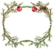 Jedlinowy drzewo kapuje z rożkami i czerwonymi piłkami na bielu Zdjęcia Royalty Free