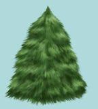 jedlinowy puszysty odosobniony drzewo Obraz Royalty Free