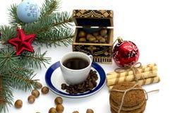 Jedliny gałąź z ornamentem, bagażnikiem, cukierkami i nutlets, Zdjęcie Royalty Free