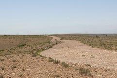 Jednakowy Sahara zdjęcie royalty free