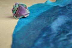 Jedwabnicza skorupa kłama na brzeg jedwabniczy morze zdjęcia royalty free
