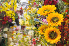 Jedwabniczy kwiatu sklep Obrazy Stock