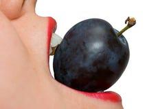 jedząc dziewczyny plum zbliżenia Obrazy Royalty Free