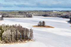 冻Jedzelewo湖 库存照片