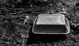 Jedzenia pudełko na ziemi fotografia stock