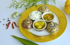 jedzenia tajlandzcy Obraz Stock