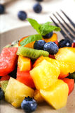 jedzenia winogron owocowy pomarańczy wegetarianin porcelanowa sałatkę Fotografia Stock