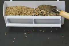 Jedzenie dla ptaków, nasieniodajna mikstura Obrazy Stock