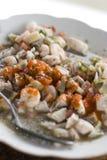 jedzenie Ecuador krajowych ceviche zdjęcia stock