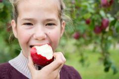 jedzenie jabłczana dziewczyna Zdjęcie Stock