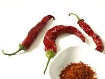 jedzenie korzenny Fotografia Stock