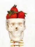 jedzenie mózgu Obraz Stock