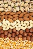 jedzenie organicznie Zdjęcie Stock