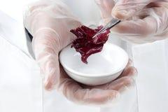 jedzenie prowadząca dochodzenie laborancka sałatka Obraz Royalty Free